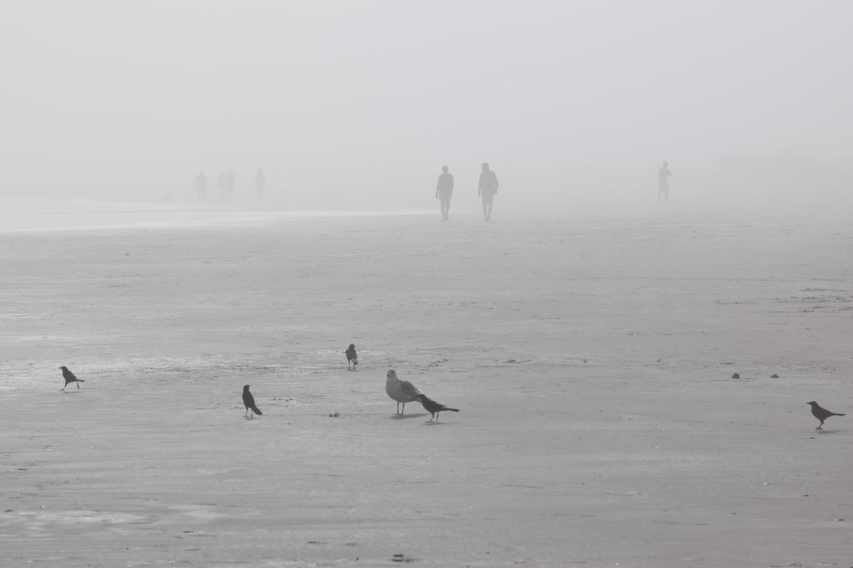 Hazy Beach Day