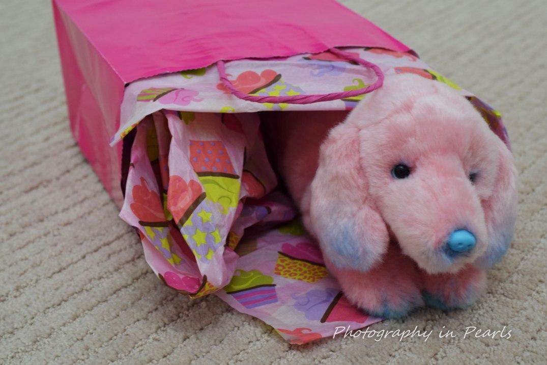 Pink Puppy Present