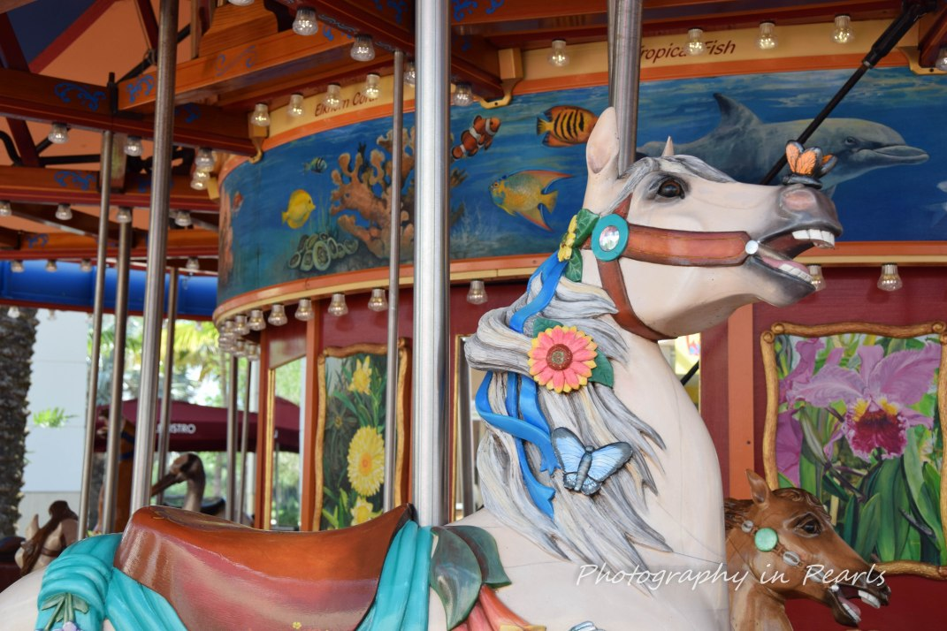 Carousel 22