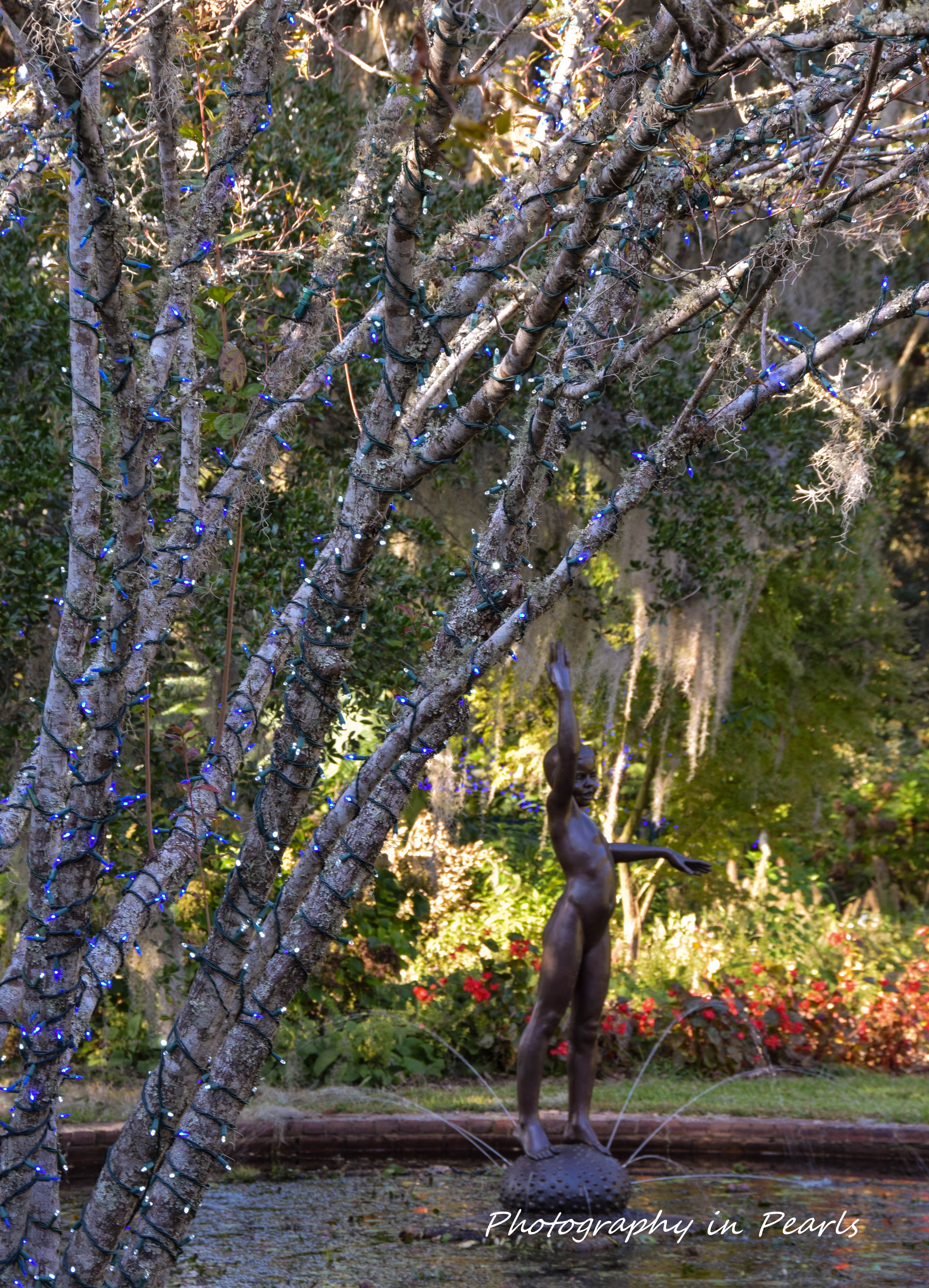 brookgreen-gardens-1