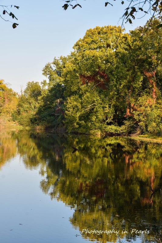 river-north-6