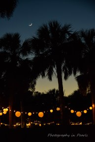 sc-flag-crescent-and-palmetto