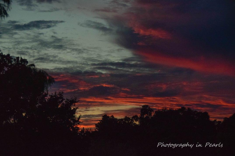 Night Sky - Texture