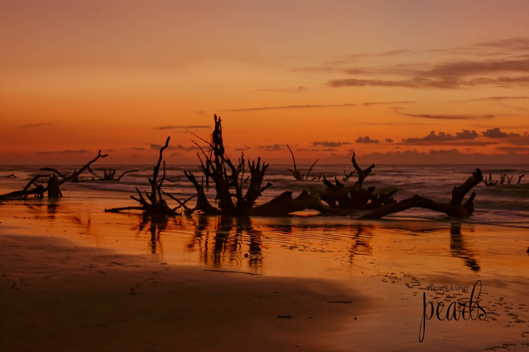 Sunrise on Boneyard Beach