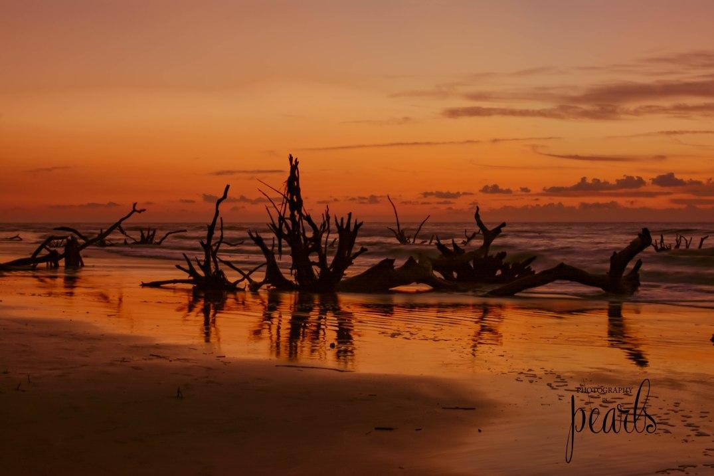 Sunrise on Boneyard Beach