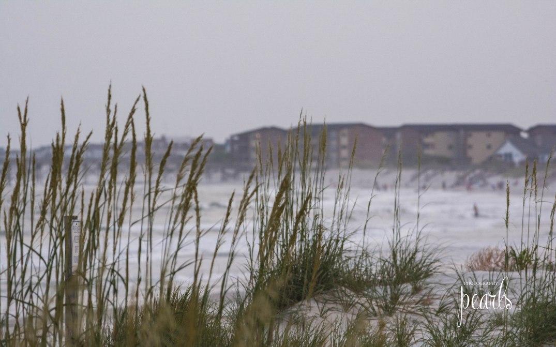 View Through the Dunes