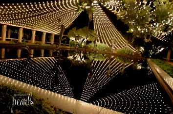Christmas Lights-10-2