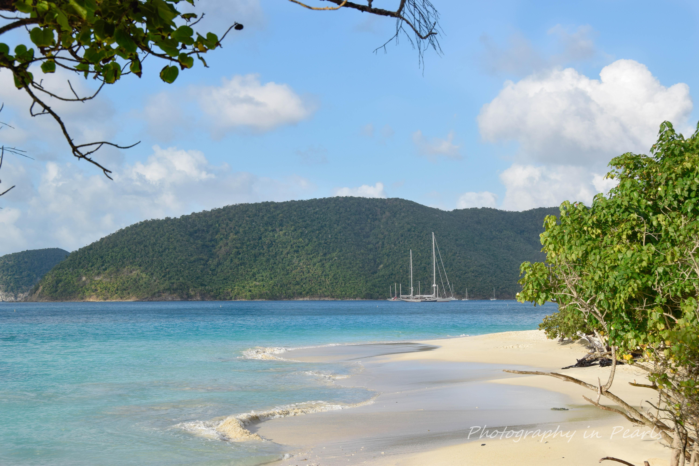 Peaceful Cinnamon Bay - St John USVI